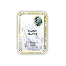 Picture of Saint David prayer booklet