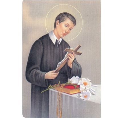 Picture of Saint Gerard - prayer for motherhood