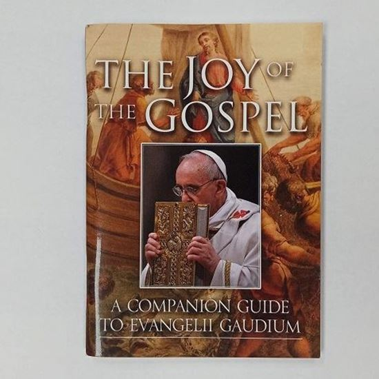 Picture of The Joy of the Gospel